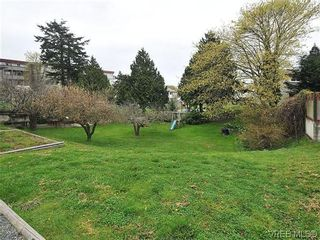Photo 13: 3167 Carroll St in VICTORIA: Vi Burnside House for sale (Victoria)  : MLS®# 636095