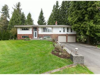 Photo 1: 30281 MERRYFIELD Avenue in Abbotsford: Bradner House for sale : MLS®# F1408278