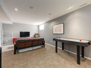 Photo 36: 17 ROYAL ELM Way NW in Calgary: Royal Oak Detached for sale : MLS®# A1034855
