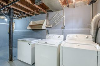 Photo 19: 11415 68 Street in Edmonton: Zone 09 House for sale : MLS®# E4229071