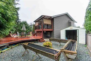 Photo 19: 26832 ALDER Drive in Langley: Aldergrove Langley House for sale : MLS®# R2421514