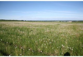 Photo 15: 4 4141 Twp Rd 340: Rural Mountain View County Land for sale : MLS®# C4123350