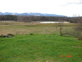 Photo 15: 668 Swan Lake Road | Kispiox Valley BC
