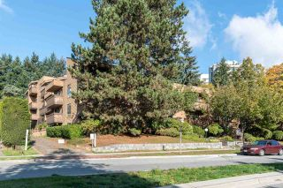 Photo 16: 103 7151 EDMONDS STREET in Burnaby: Highgate Condo for sale (Burnaby South)  : MLS®# R2511306