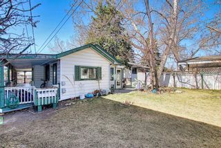 Photo 41: 116 Bowers Street NE: Airdrie Detached for sale : MLS®# A1095413