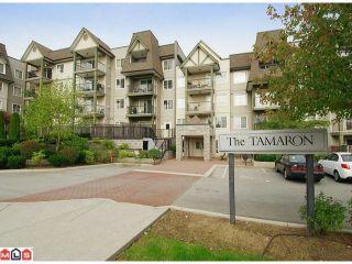 """Photo 1: 202 12083 92A Avenue in Surrey: Queen Mary Park Surrey Condo for sale in """"TAMARON"""" : MLS®# F1210902"""
