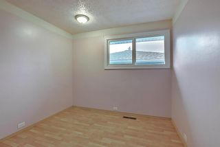 Photo 23: 1936 Matheson Drive NE in Calgary: Mayland Heights Detached for sale : MLS®# A1130969