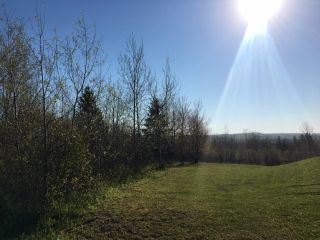 Photo 2: Lot 11-2 Douglas Road in Alma: 108-Rural Pictou County Vacant Land for sale (Northern Region)  : MLS®# 202113696