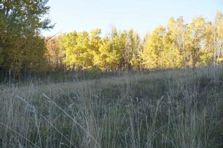 Photo 13: 31 53214 RR13: Rural Parkland County Rural Land/Vacant Lot for sale : MLS®# E4266458