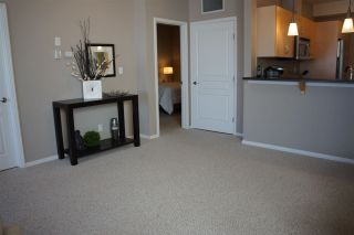 Photo 14: 200 9940 SHERRIDON Drive: Fort Saskatchewan Condo for sale : MLS®# E4241691