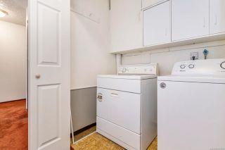 Photo 13: 3923 Cedar Hill Cross Rd in : SE Cedar Hill House for sale (Saanich East)  : MLS®# 851798
