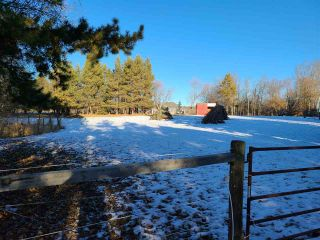 Photo 4: 6 53420 RGE RD 274: Rural Parkland County House for sale : MLS®# E4235414