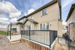 Photo 35: 118 Panamount Road NW in Calgary: Panorama Hills Detached for sale : MLS®# A1127882