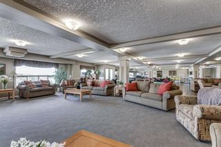 Photo 35: Calgary Real Estate - Millrise Condo Sold By Calgary Realtor Steven Hill or Sotheby's International Realty Canada Calgary