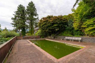 "Photo 14: 301 N HYTHE Avenue in Burnaby: Capitol Hill BN House for sale in ""CAPITOL HILL"" (Burnaby North)  : MLS®# R2531896"