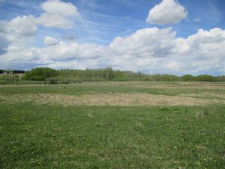 Photo 17: Twp Rd 290: Rural Mountain View County Land for sale : MLS®# C4278326