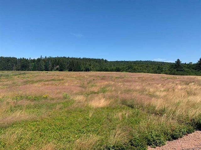 Main Photo: Hwy#209 Highway in East Advocate: 102S-South Of Hwy 104, Parrsboro and area Vacant Land for sale (Northern Region)  : MLS®# 202107461
