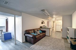 Photo 25: 90 Hounslow Drive NW in Calgary: Highwood Detached for sale : MLS®# A1145127