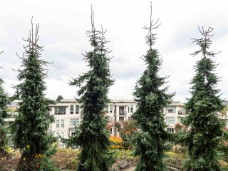 """Photo 31: 203 255 ROSS Drive in New Westminster: Fraserview NW Condo for sale in """"GROVE AT VICTORIA HILL"""" : MLS®# R2527121"""