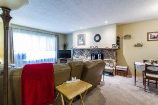 Photo 7: 20892 DEWDNEY TRUNK Road in Maple Ridge: Southwest Maple Ridge 1/2 Duplex for sale : MLS®# R2098243