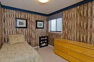 Photo 34: 32 SKYVIEW SPRINGS Gardens NE in Calgary: Skyview Ranch Detached for sale : MLS®# A1118652