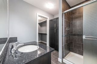 Photo 19: 2127 AUSTIN Link in Edmonton: Zone 56 Attached Home for sale : MLS®# E4255544