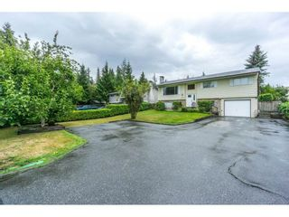 Photo 5: 20250 48 AVENUE in Langley: Langley City Home for sale ()  : MLS®# R2305434