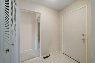 Photo 3: 2719 41A Avenue SE in Calgary: Dover Detached for sale : MLS®# A1132973