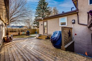 Photo 27: 8 Mckenna Road SE in Calgary: McKenzie Lake Detached for sale : MLS®# A1049064