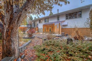 Photo 42: 3727 Underhill Place NW in Calgary: University Heights Detached for sale : MLS®# A1045664