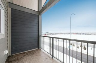 Photo 25: 3410 181 Skyview Ranch Manor NE in Calgary: Skyview Ranch Apartment for sale : MLS®# A1073053