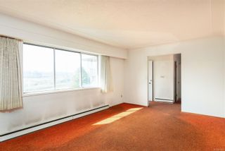 Photo 9: 4101 Carey Rd in : SW Marigold House for sale (Saanich West)  : MLS®# 857802