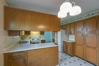 Photo 13: 19558 116B Ave Pitt Meadows MLS 2100320 3 Bedroom 3 Level Split
