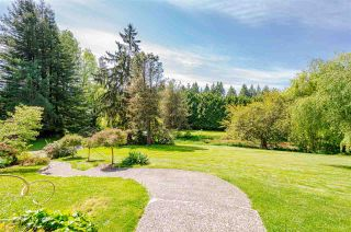 Photo 6: 4788 232 Street in Langley: Salmon River House for sale : MLS®# R2577895
