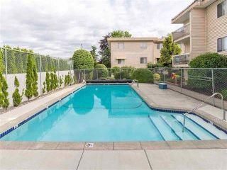 """Photo 15: 325 11806 88 Avenue in Delta: Annieville Condo for sale in """"Sungod Villa"""" (N. Delta)  : MLS®# R2368689"""