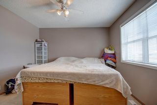 Photo 23: 129 Martinpark Way NE in Calgary: Martindale Detached for sale : MLS®# A1105231