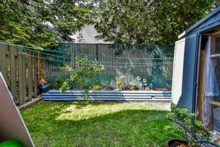 Photo 5: 45 3030 TRETHEWEY Street: Townhouse for sale in Abbotsford: MLS®# R2567710