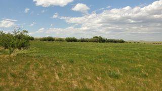 Photo 2: Range Road 263 in Rural Willow Creek No. 26, M.D. of: Rural Willow Creek M.D. Land for sale : MLS®# C4070513