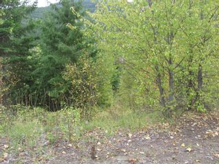 Photo 28: 80 Acres Creighton Valley Road, in Lumby: Vacant Land for sale : MLS®# 10239894