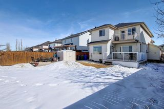 Photo 50: 260 SPRINGMERE Way: Chestermere Detached for sale : MLS®# A1073459