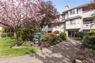 """Photo 1: 105 6440 197 Street in Langley: Willoughby Heights Condo for sale in """"Kingsway"""" : MLS®# R2603548"""