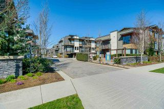 """Main Photo: 7 7811 209 Street in Langley: Willoughby Heights Townhouse for sale in """"Exchange"""" : MLS®# R2566249"""