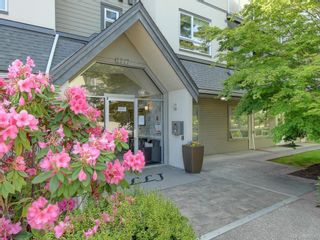 Photo 17: 203 2227 James White Blvd in : Si Sidney North-East Condo for sale (Sidney)  : MLS®# 866085