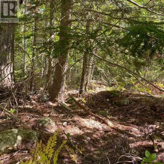 Photo 3: Lot 64 Forest Point Loop in Labelle: Vacant Land for sale : MLS®# 202125067