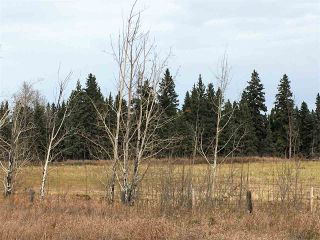 Photo 4: Highway 2A: Rural Wetaskiwin County Rural Land/Vacant Lot for sale : MLS®# E4144680
