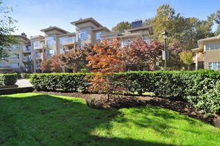 Photo 19: 113 2558 PARKVIEW Lane in Port Coquitlam: Central Pt Coquitlam Condo for sale : MLS®# R2212920