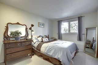 Photo 9: 319 SCENIC GLEN Place NW in Calgary: Scenic Acres Detached for sale : MLS®# A1021261