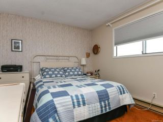 Photo 17: 558 23rd St in COURTENAY: CV Courtenay City House for sale (Comox Valley)  : MLS®# 797770