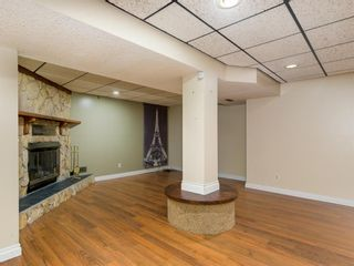 Photo 19: 51 Templewood Mews NE in Calgary: Temple Detached for sale : MLS®# A1039525