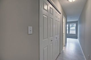 Photo 13: 201 11104 109 Avenue in Edmonton: Zone 08 Condo for sale : MLS®# E4241309